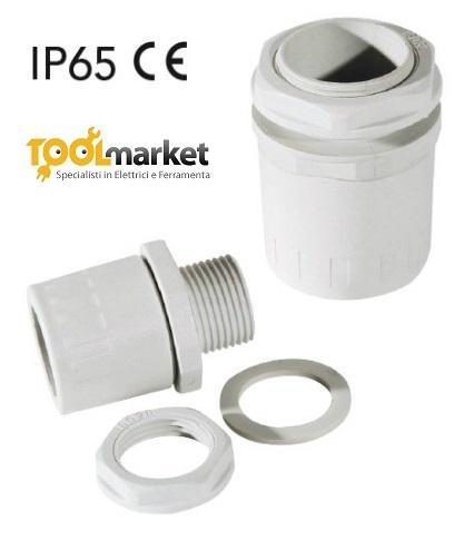 Raccordo tubo-scatola IP65